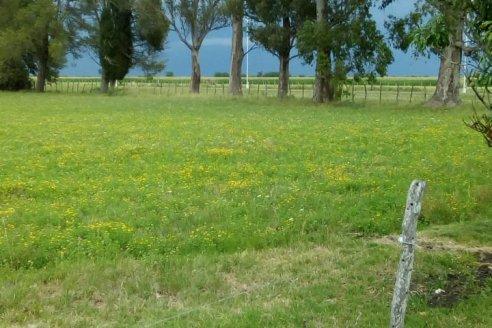 Datos de la lluvia en Entre Ríos: los gurúes erraron de nuevo