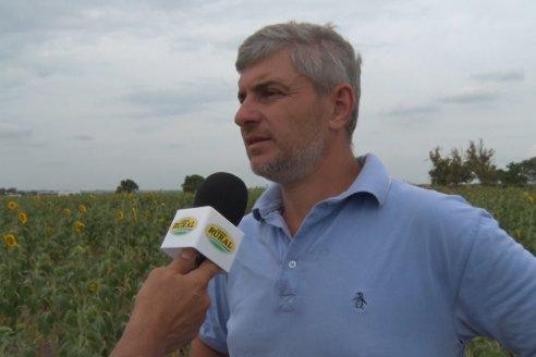 Esteban Merini - Asesor Privado - Una nueva experiencia: Girasol Tardio en Valle Maria