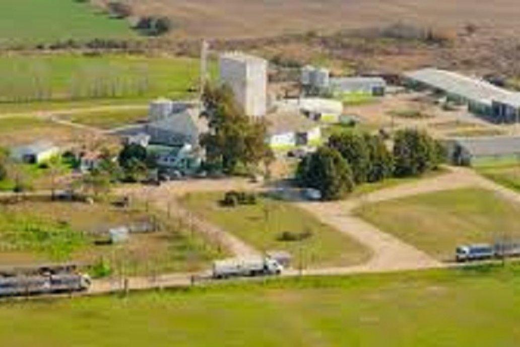Bioter cerró el 2020 en crecimiento y tiene un plan de expansión para el 2021