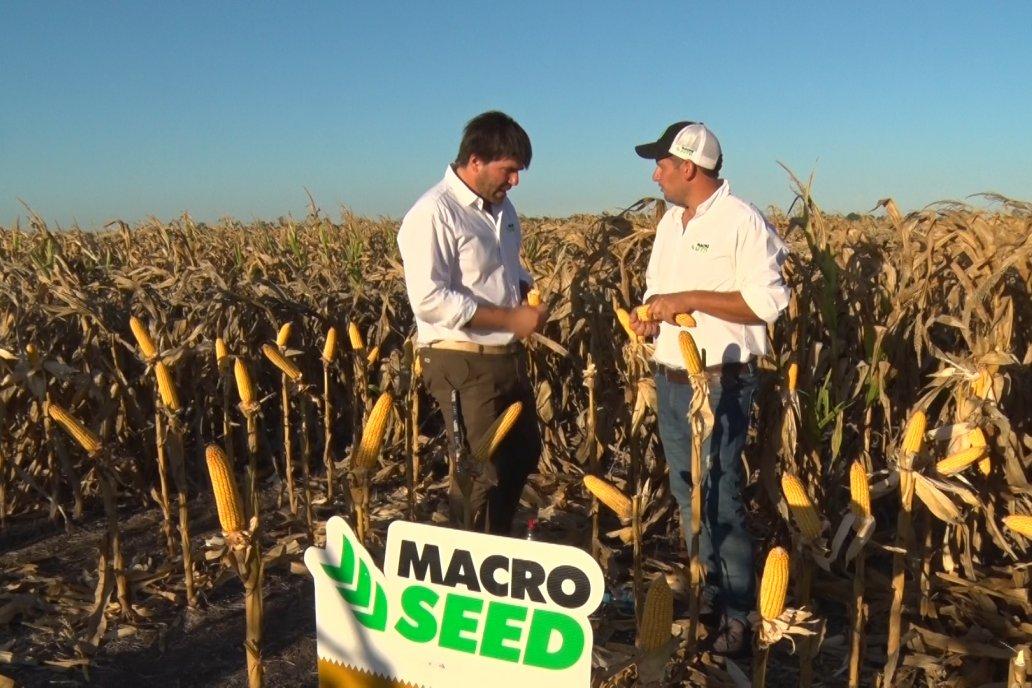 Francisco Ocampo y Emiliano Medail - Macro Seed