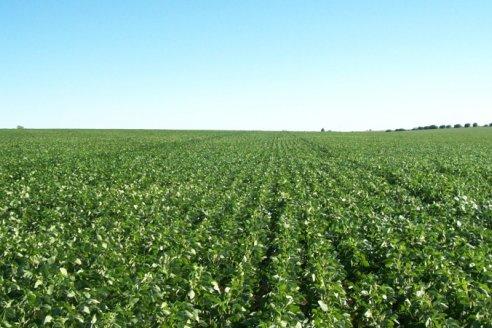 Presentan el Sistema Enlist para una nueva agricultura