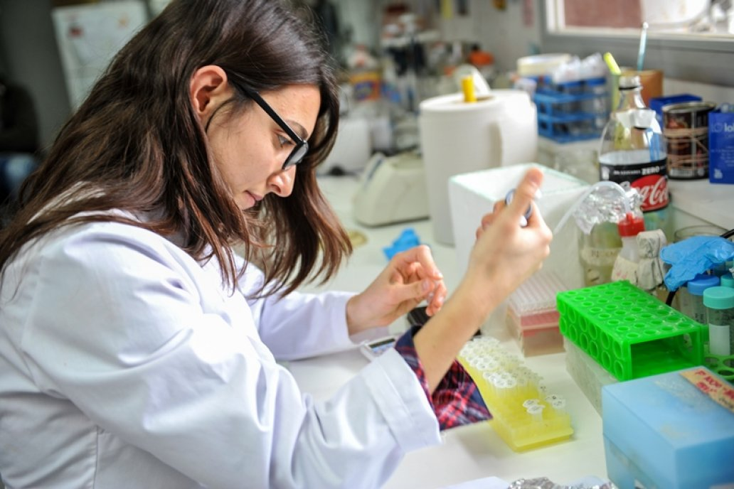 Bajan impuestos al fruto del trabajo de los investigadores argentinos.
