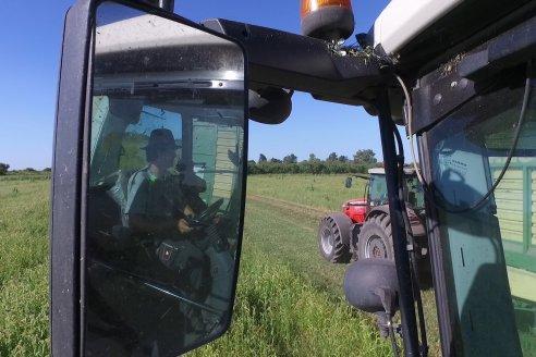 Recomendaciones desde INTA para una cosecha libre de Covid