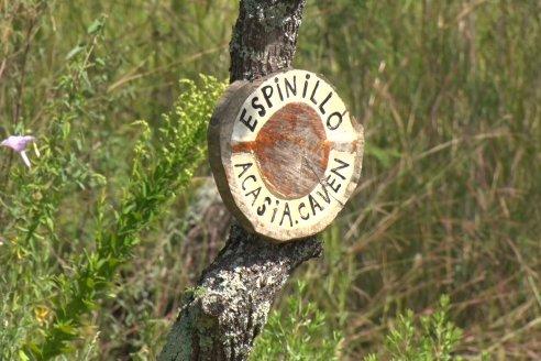 Vista a Establecimeinto Pampa Azul - Concordia - Vinos, Historia y una Reserva Natural se dan cita en un solo lugar