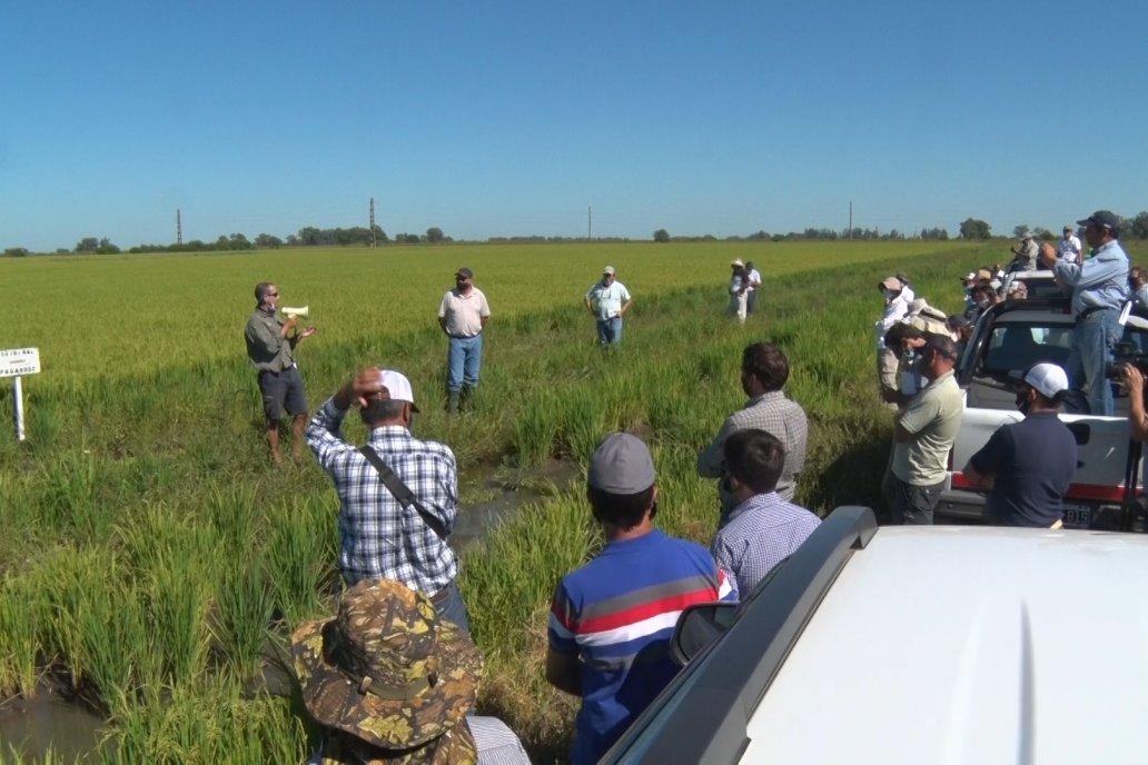 Un día espléndido desde lo climático favoreció el encuentro de productores.