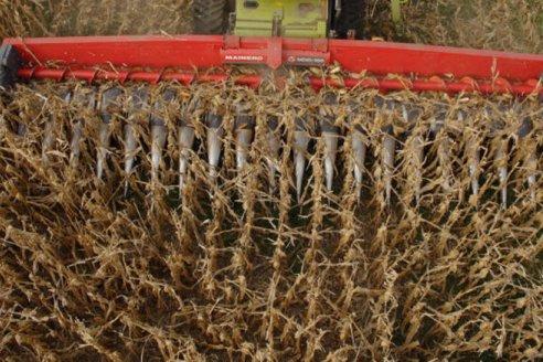 Contrapunto por supuesta falta de repuestos para maquinaria agrícola