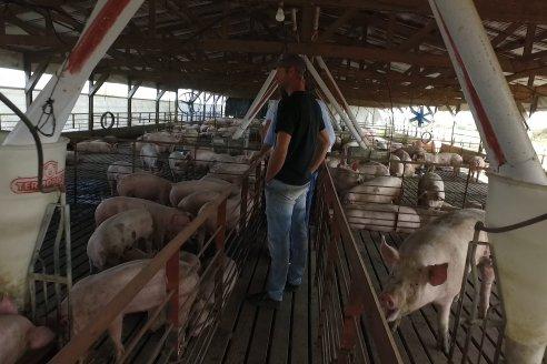 Jornada de la cadena de la Carne Porcina