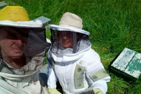 El medio ambiente entrerriano potencia la producción de miel