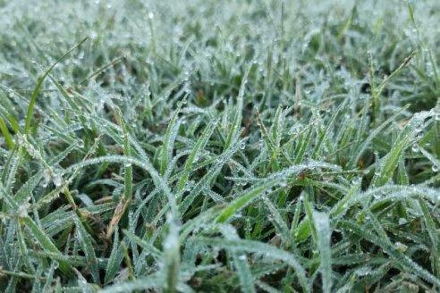 Tras el temporal, llegaron las primeras heladas del año