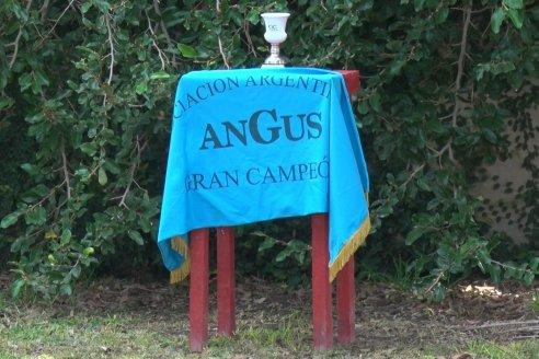 10°  Aniversario  Cabaña Angus Los Vascos - Viale - Entre Ríos