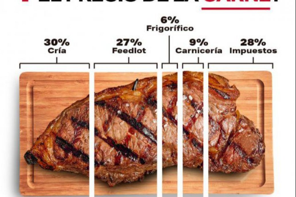 Expertos difunden composición y comportamiento del principal alimento argentino.