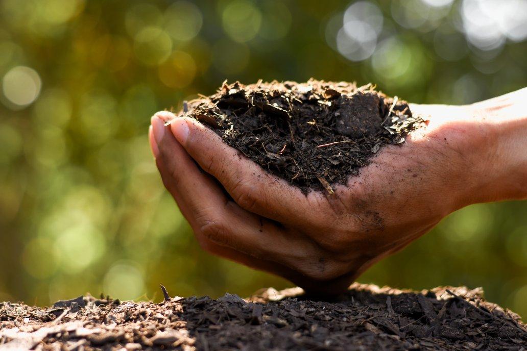 Verdesian: Tecnologías innovadora para hacer uso eficiente de nutrientes