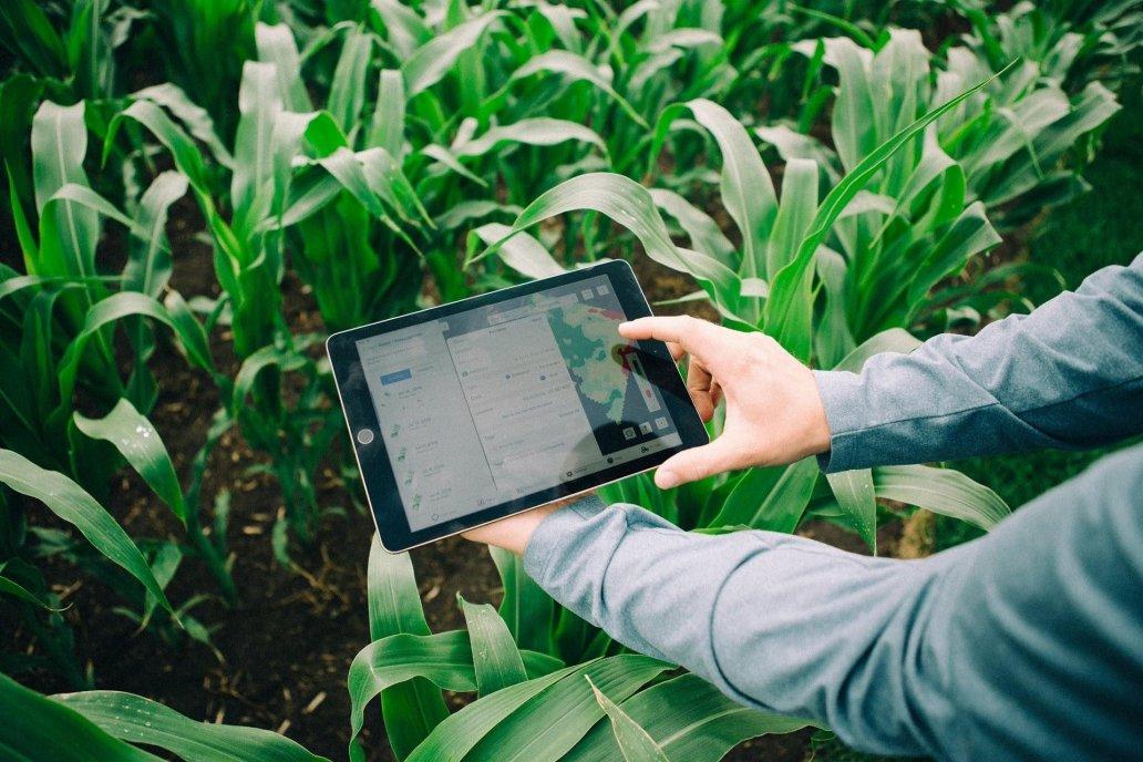 Desde Fertilizar afirman que se pueden lograr 1,8 toneladas más por hectárea.