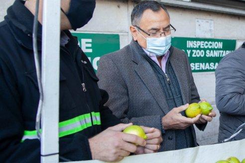 Periodista desnuda un papelón de Senasa con embarque de citrus