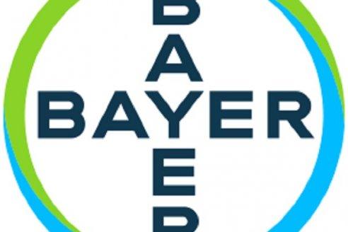 Cambios en el área de Comunicaciones de Bayer Cono Sur
